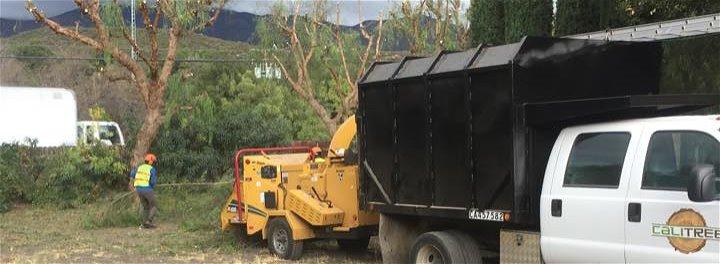 Cali Tree Care
