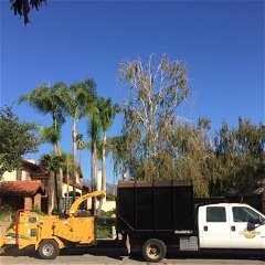 Cali Tree Care