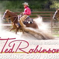 Ted Robinson Cow Horses